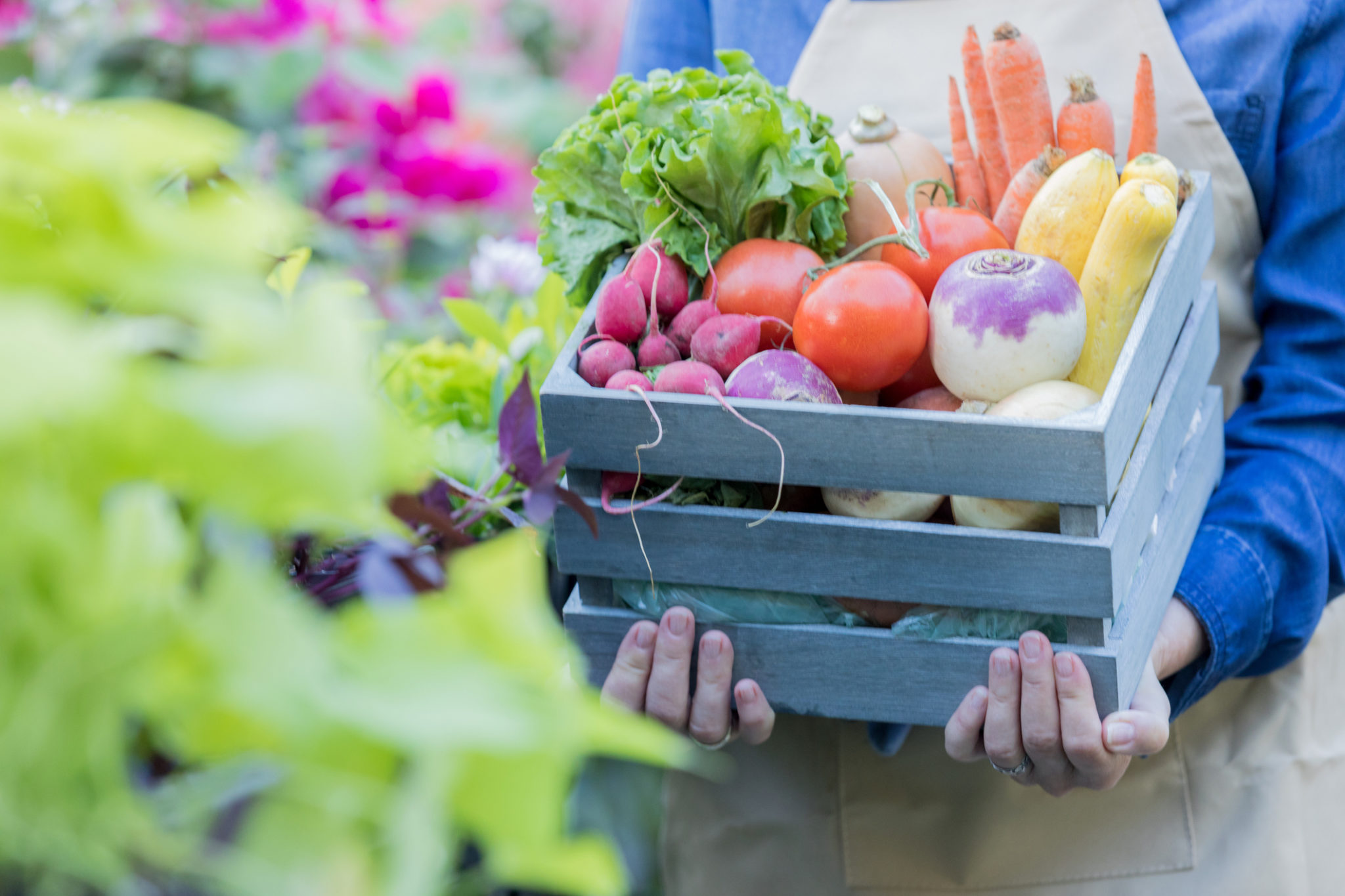 Unrecognizable woman holds basket of fresh veggies