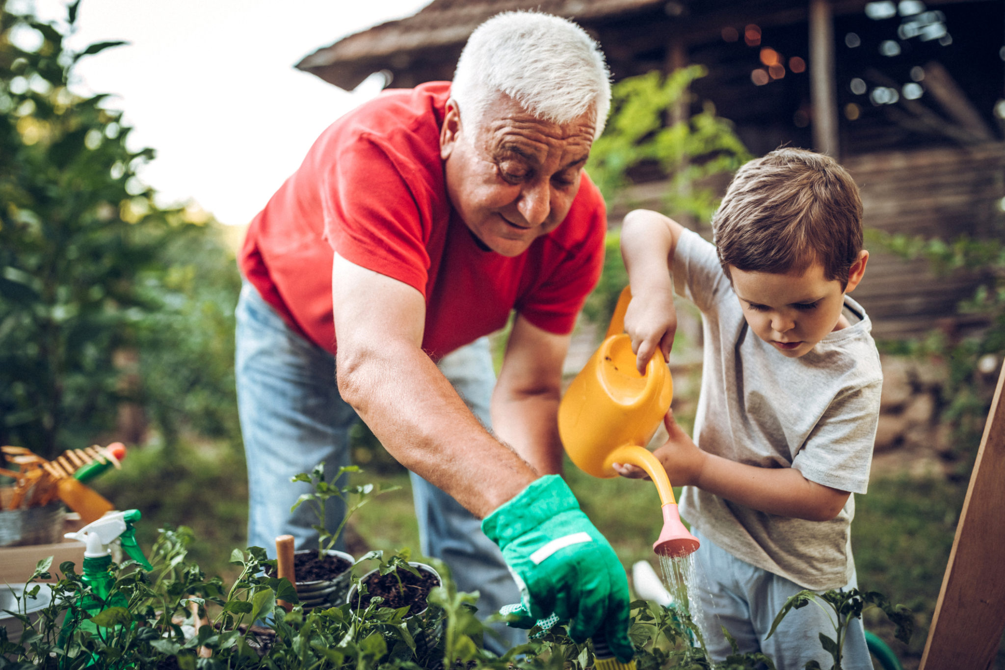 Grandfather and grandson in garden
